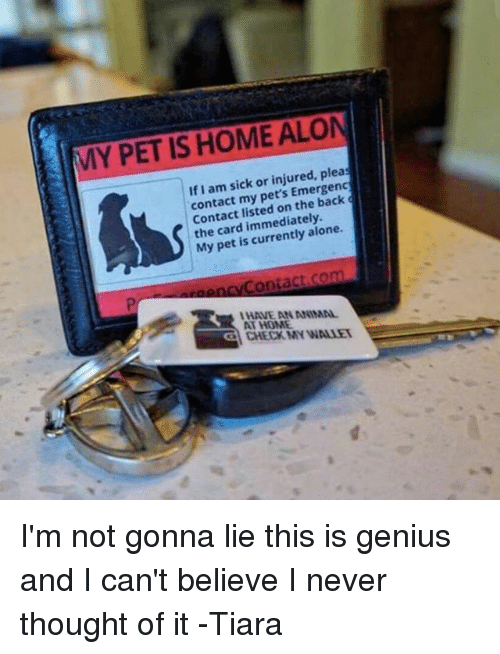 Aloner: MY PET IS HOME ALON  If I am sick or injured, pleas  contact my pet's Emergenc  > Contact listed on the back  the card immediately.  My pet is currently alone.  P  HAVE AN ANIMAL  AT HOME  giCHECKMY VINAW ーーーーーーーー ーーー I'm not gonna lie this is genius and I can't believe I never thought of it -Tiara