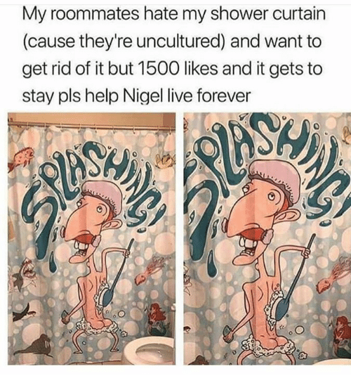 Pls Help: My roommates hate my shower curtain  (cause they're uncultured) and want to  get rid of it but 1500 likes and it gets to  stay pls help Nigel live forever  0  10