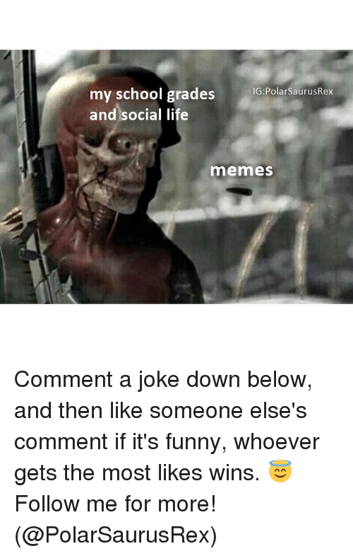 Life Memes: my school grades  IG:PolarsaurusRex  and social life  memes Comment a joke down below, and then like someone else's comment if it's funny, whoever gets the most likes wins. 😇 Follow me for more! (@PolarSaurusRex)