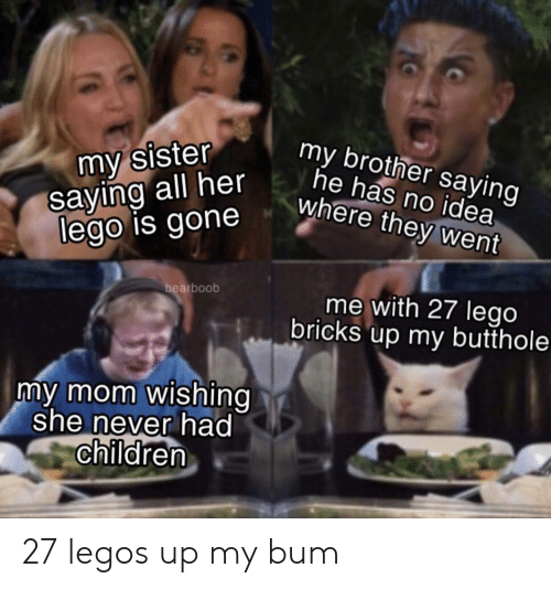 Children, Lego, and Legos: my sister  saying all her  lego is gone  my brother saying  he has no idea  where they went  bearboob  me with 27 lego  bricks up my butthole  my mom wishing  she never had  children 27 legos up my bum