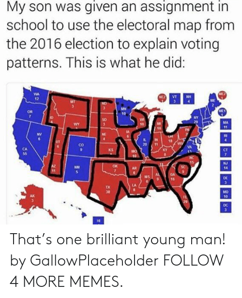 2016 Election: My son was given an assignment in  school to use the electoral map from  the 2016 election to explain voting  patterns. This is what he did:  NE2  VT  NH  12  ME1  NY  MA  WY  10  11  NV  NE  UT  Co  KS  MO  NJ  AR  14  11  3  MO  10  DC  3  HI That's one brilliant young man! by GallowPlaceholder FOLLOW 4 MORE MEMES.