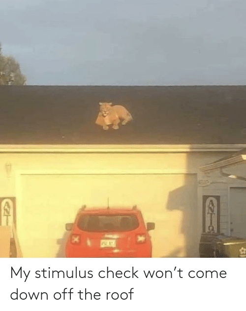 Come Down: My stimulus check won't come down off the roof