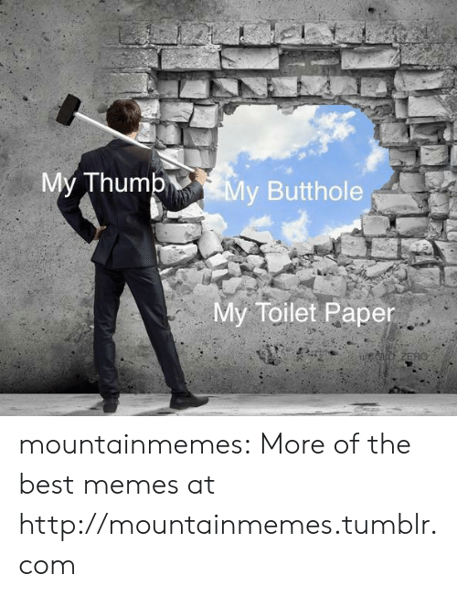 Memes, Tumblr, and Zero: My Thump  My Butthole  My Toilet Paper  ed ZERO mountainmemes:  More of the best memes at http://mountainmemes.tumblr.com