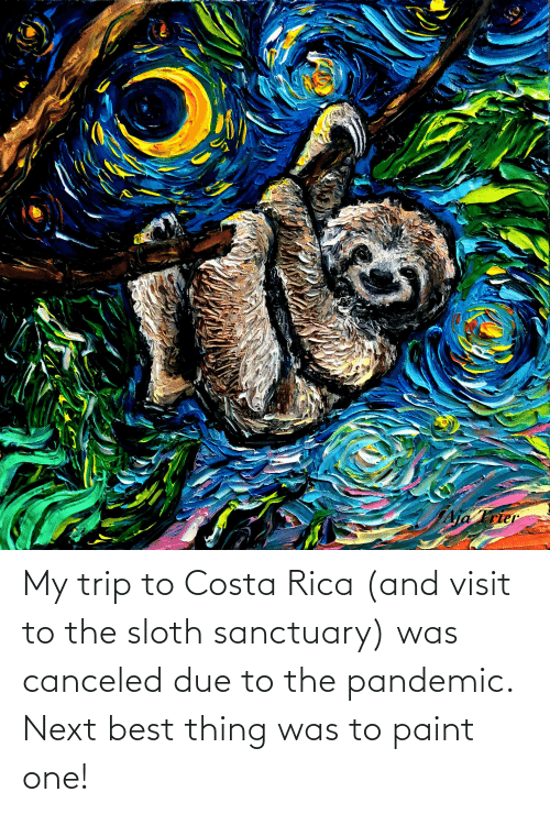 costa: My trip to Costa Rica (and visit to the sloth sanctuary) was canceled due to the pandemic. Next best thing was to paint one!