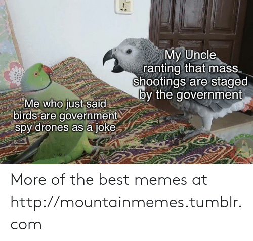 ranting: My Uncle  ranting that mass  shootings are staged  by the government  Me who just said  birds are government  spy drones as a joke More of the best memes at http://mountainmemes.tumblr.com