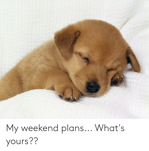 My Weekend: My weekend plans... What's yours??