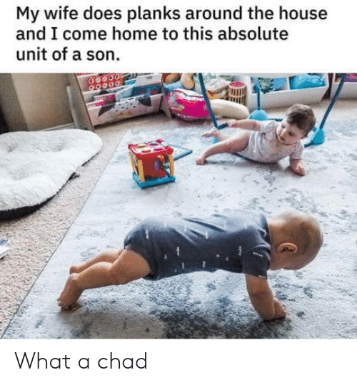 Home, House, and Wife: My wife does planks around the house  and I come home to this absolute  unit of a son What a chad
