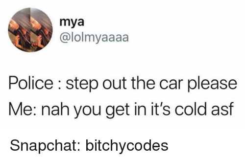 Police, Snapchat, and Cold: mya  @lolmyaaaa  Police : step out the car please  Me: nah you get in it's cold asf Snapchat: bitchycodes