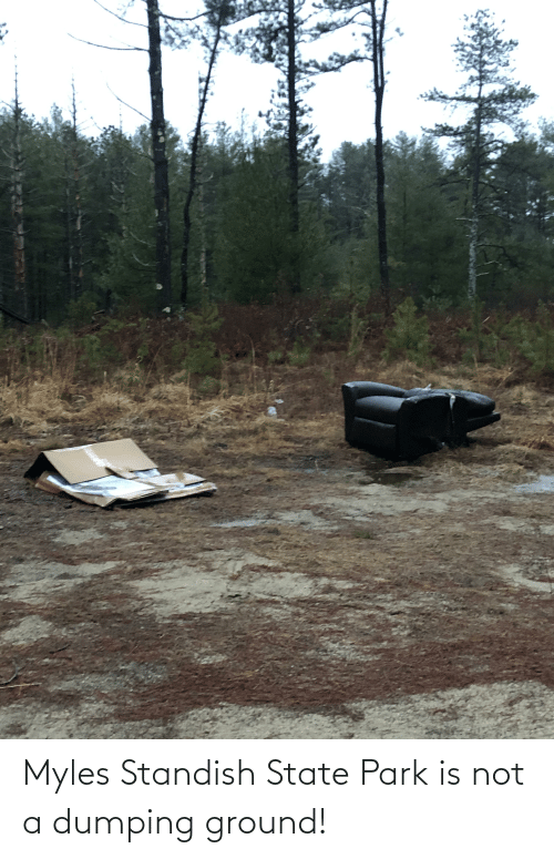 dumping: Myles Standish State Park is not a dumping ground!