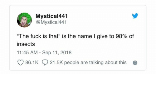 """Fuck, Humans of Tumblr, and Name: Mystical441  Mystical441  """"The fuck is that"""" is the name I give to 98% of  insects  11:45 AM Sep 11, 2018  86.1K 21.5K people are talking about this 6"""