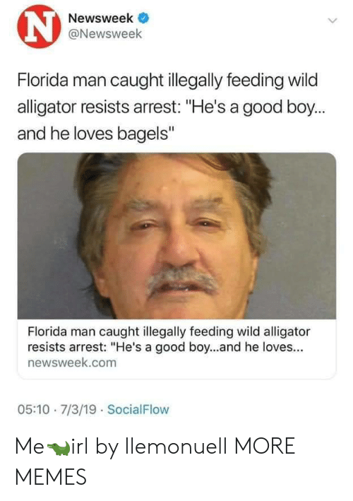 "Bagels: N  Newsweek  @Newsweek  Florida man caught illegally feeding wild  alligator resists arrest: ""He's a good boy...  and he loves bagels""  Florida man caught illegally feeding wild alligator  resists arrest: ""He's a good boy...and he loves...  newsweek.com  05:10 7/3/19 SocialFlow Me🐊irl by llemonuell MORE MEMES"