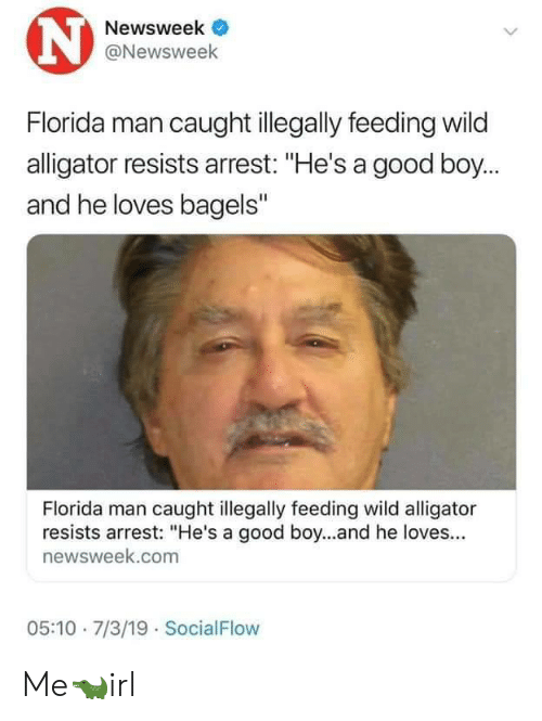 "Florida Man, Alligator, and Florida: N  Newsweek  @Newsweek  Florida man caught illegally feeding wild  alligator resists arrest: ""He's a good boy...  and he loves bagels""  Florida man caught illegally feeding wild alligator  resists arrest: ""He's a good boy...and he loves...  newsweek.com  05:10 7/3/19 SocialFlow Me🐊irl"