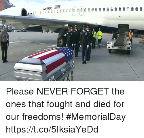Freedoms: N915DL Please NEVER FORGET the ones that fought and died for our freedoms! #MemorialDay https://t.co/5IksiaYeDd