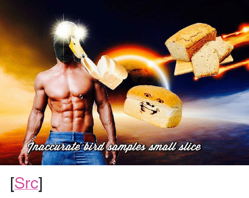 """Delet: naccurate bird samples small slice <p>[<a href=""""https://www.reddit.com/r/surrealmemes/comments/827exl/an_error_has_occurred_within_birb_please_delet/"""">Src</a>]</p>"""