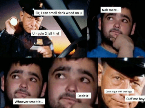 Can Smell: Nah mate...  Sir, I can smell dank weed on u  U r goin 2 jail 4 lyf  Can't argue with that logic  Dealt it!  Cuff me boys  Whoever smelt it...