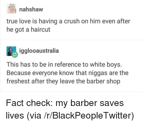 Fact Check: nahshaw  true love is having a crush on him even after  he got a haircut  igglooaustralia  This has to be in reference to white boys.  Because everyone know that niggas are the  freshest after they leave the barber shop <p>Fact check: my barber saves lives (via /r/BlackPeopleTwitter)</p>