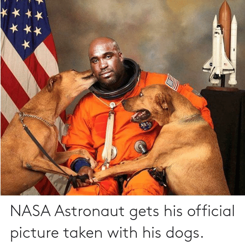 Official: NASA Astronaut gets his official picture taken with his dogs.
