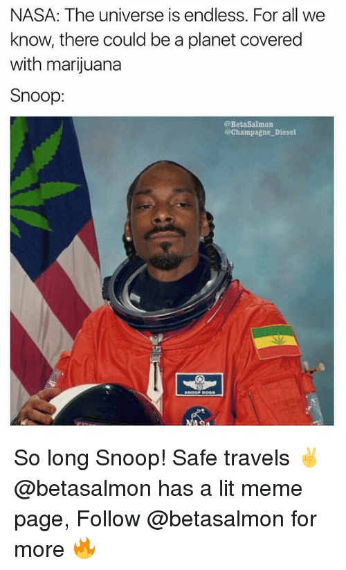 Snooping: NASA: The universe is endless. For all we  know, there could be a planet covered  with marijuana  Snoop:  @BetaSalmon  @Champagne Diesel So long Snoop! Safe travels ✌️@betasalmon has a lit meme page, Follow @betasalmon for more 🔥