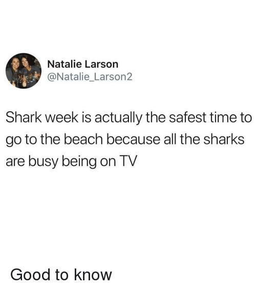 shark week: Natalie Larson  @Natalie_Larson2  Shark week is actually the safest time to  go to the beach because all the sharks  are busy being on TV Good to know