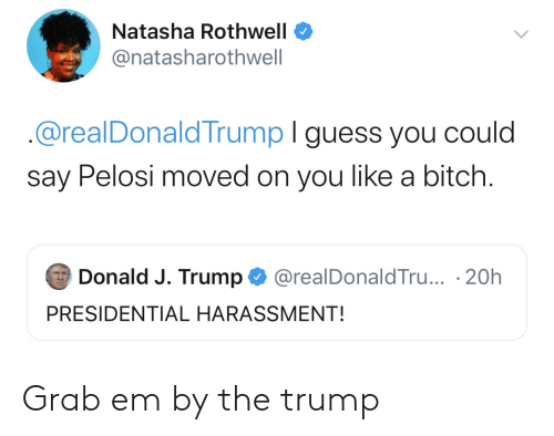J Trump: Natasha Rothwell  @natasharothwell  @realDonaldTrump I guess you could  say Pelosi moved on you like a bitch.  Donald J. Trump  @realDonaldTru... 20h  PRESIDENTIAL HARASSMENT! Grab em by the trump