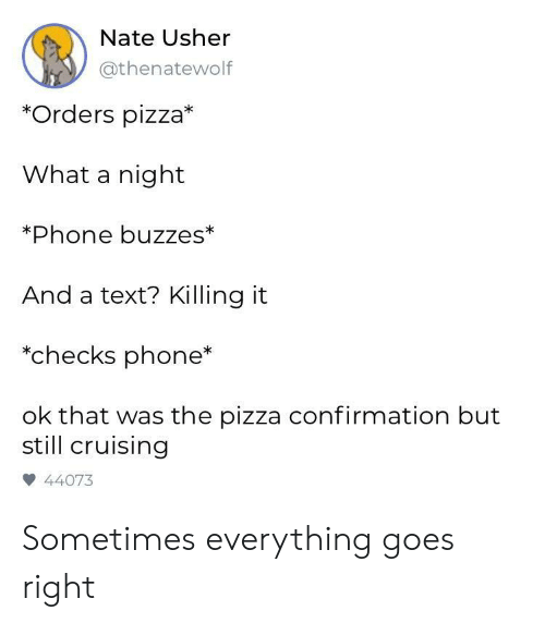 Usher: Nate Usher  @thenatewolf  *Orders pizza*  What a night  Phone buzzes*  And a text? Killing it  *checks phone*  ok that was the pizza confirmation but  still cruising  44073 Sometimes everything goes right
