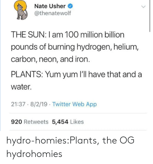 burning: Nate Usher  @thenatewolf  THE SUN: I am 100 million billion  pounds of burning hydrogen, helium,  carbon, neon, and iron.  PLANTS: Yum yum 'll have that and a  water.  21:37 8/2/19 Twitter Web App  920 Retweets 5,454 Likes hydro-homies:Plants, the OG hydrohomies