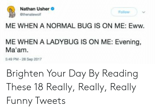 really-really-really: Nathan Usher  Follow  athenatewol  ME WHEN A NORMAL BUG IS ON ME: Eww.  ME WHEN A LADYBUG IS ON ME: Evening,  Ma'am.  5:49 PM-28 Sep 2017 Brighten Your Day By Reading These 18 Really, Really, Really Funny Tweets
