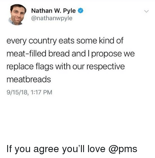 Love, Memes, and 🤖: Nathan W. Pyle  @nathanwpyle  every country eats some kind of  meat-filled bread and I propose we  replace flags with our respectivee  meatbreads  9/15/18, 1:17 PM If you agree you'll love @pms