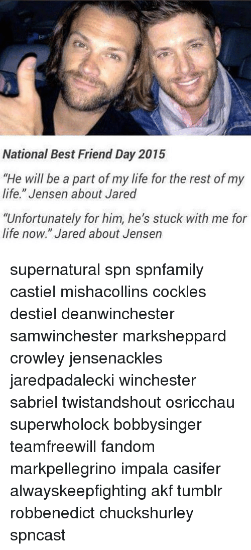 "national best friend day: National Best Friend Day 2015  ""He will be a part of my life for the rest of my  life."" Jensen about Jared  ""Unfortunately for him, he's stuck with me for  life now."" Jared about Jensen supernatural spn spnfamily castiel mishacollins cockles destiel deanwinchester samwinchester marksheppard crowley jensenackles jaredpadalecki winchester sabriel twistandshout osricchau superwholock bobbysinger teamfreewill fandom markpellegrino impala casifer alwayskeepfighting akf tumblr robbenedict chuckshurley spncast"