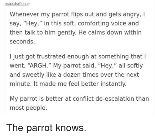 """Flips: natrashafierce  Whenever my parrot flips out and gets angry,I  say, """"Hey,"""" in this soft, comforting voice and  then talk to him gently. He calms down within  seconds.  I just got frustrated enough at something that l  went, """"ARGH."""" My parrot said, """"Hey,"""" all softly  and sweetly like a dozen times over the next  minute. It made me feel better instantly.  My parrot is better at conflict de-escalation than  most people. The parrot knows."""