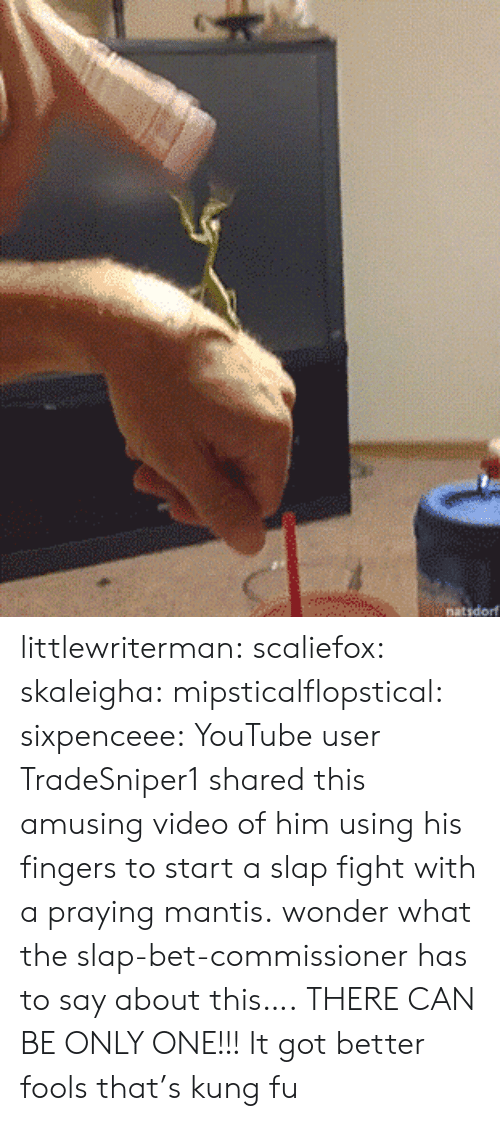 Tumblr, youtube.com, and Blog: natsdorf littlewriterman: scaliefox:  skaleigha:  mipsticalflopstical:   sixpenceee: YouTube user TradeSniper1 shared this amusing video of him using his fingers to start a slap fight with a praying mantis. wonder what the slap-bet-commissioner has to say about this….   THERE CAN BE ONLY ONE!!!  It got better   fools that's kung fu