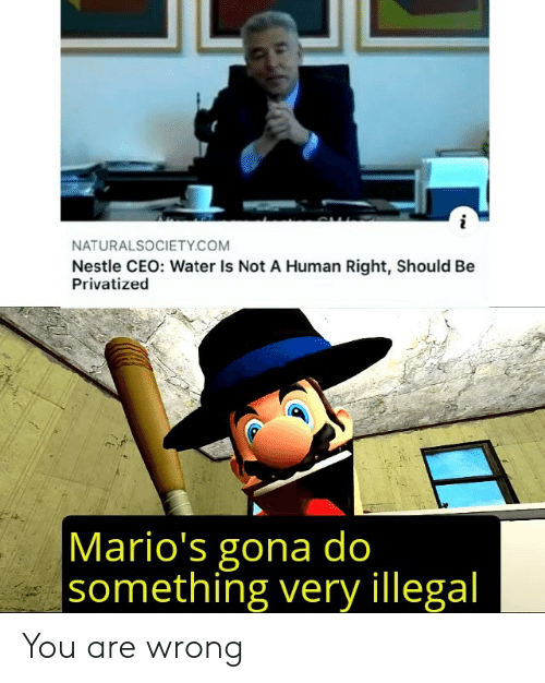Water, Nestle, and Human: NATURALSOCIETY.COM  Nestle CEO: Water Is Not A Human Right, Should Be  Privatized  Mario's gona do  something very illegal You are wrong