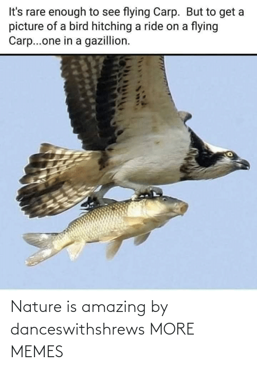 Amazing: Nature is amazing by danceswithshrews MORE MEMES