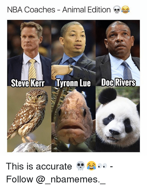 Doc Rivers: NBA Coaches-Animal Edition  Steve Kerr  Tyronn Lue  Doc Rivers This is accurate 💀😂👀 - Follow @_nbamemes._