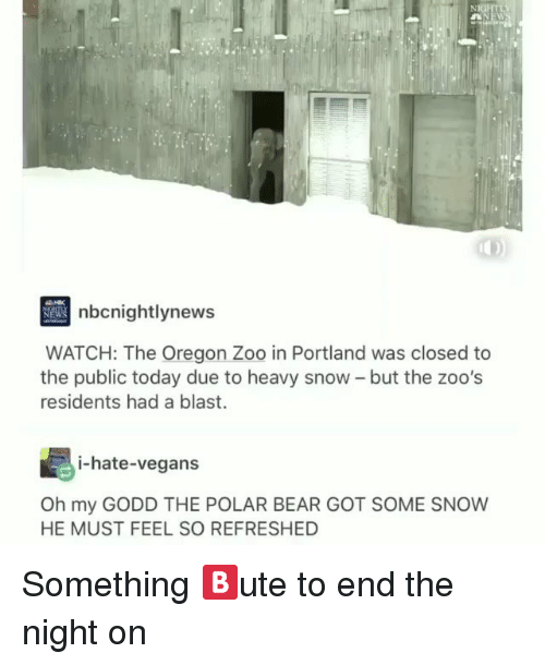 portland: nbcnightlynew  WATCH: The Oregon Zoo in Portland was closed to  the public today due to heavy snow - but the zoo's  residents had a blast.  i-hate-vegans  Oh my GODD THE POLAR BEAR GOT SOME SNOW  HE MUST FEEL SO REFRESHED Something 🅱️ute to end the night on