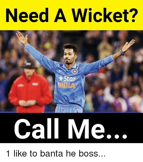 wicket: Need A Wicket?  *Star  ND  Call Me... 1 like to banta he boss...