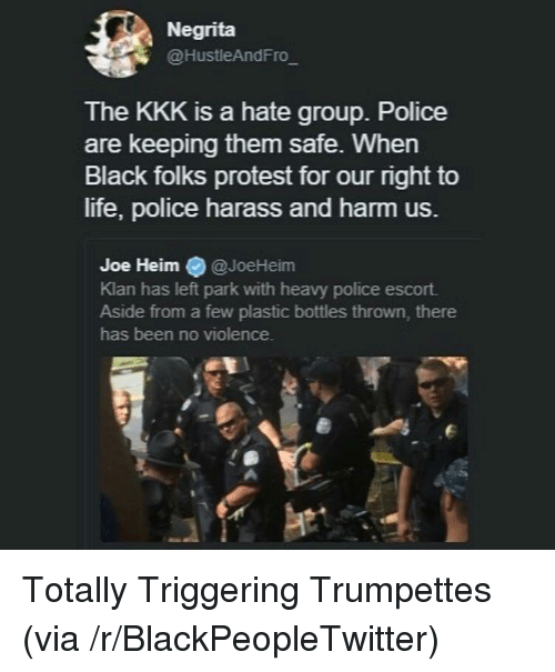 Triggering: Negrita  @HustleAndFro  The KKK is a hate group. Police  are keeping them safe. When  Black folks protest for our right to  life, police harass and harm us.  Joe Heim @JoeHeim  Klan has left park with heavy police escort.  Aside from a few plastic bottles thrown, there  has been no violence. <p>Totally Triggering Trumpettes (via /r/BlackPeopleTwitter)</p>