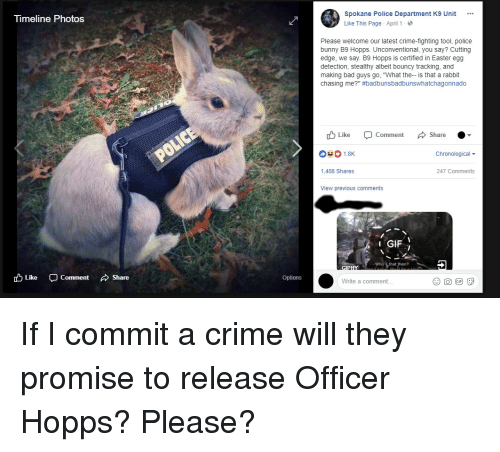 "hopps: neline Photos  Spokane Police Department K9 Unit  Like This Page . April 1 .  Please welcome our latest crime-fighting tool, police  bunny B9 Hopps. Unconventional, you say? Cutting  edge, we say. B9 Hopps is certified in Easter egg  detection, stealthy albeit bouncy tracking, and  making bad guys go, ""What the-- is that a rabbit  chasing me?"" #badbunsbadbunswhatchagonnado  Like Comment Share  Chronological  1,408 Shares  247 Comments  View previous comments  1 GIF İ  Who's that then?  cD Like  -Comment  、Share  Options  Write a comment... If I commit a crime will they promise to release Officer Hopps? Please?"