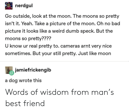 Know Ur: nerdgul  Go outside, look at the moon. The moons so pretty  isn't it. Yeah. Take a picture of the moon. Oh no bad  picture it looks like a weird dumb speck. But the  moons so pretty???  U know ur real pretty to. cameras arnt very nice  sometimes. But your still pretty. Just like moon  PPP?  jamiefrickengib  a dog wrote thiS Words of wisdom from man's best friend