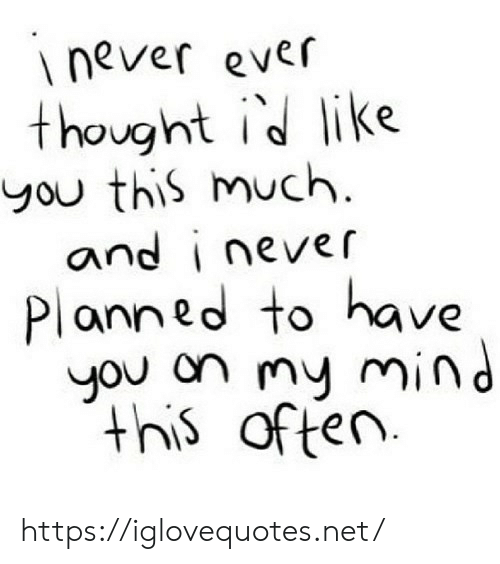 Mind, Never, and Thought: never ever  thought id like  you this much  and i never  Planned to have  you on my mind  this  of ten https://iglovequotes.net/