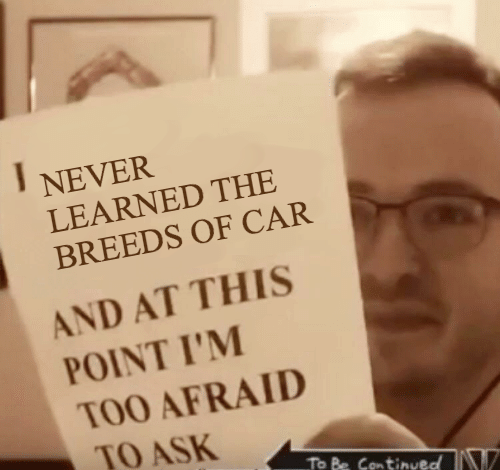 And At This Point Im Too Afraid To Ask: NEVER  LEARNED THE  BREEDS OF CAR  AND AT THIS  POINT I'M  TOO AFRAID  TO ASK  To Be Continueo