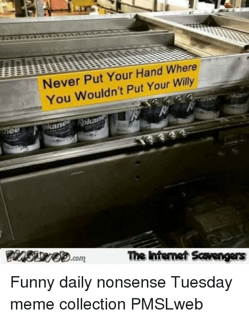meme collection: Never Put Your Hand Where  You Wouldn't Put Your Willy  The Ihtemet Scavengers <p>Funny daily nonsense  Tuesday meme collection  PMSLweb </p>
