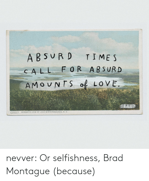Brad: nevver: Or selfishness, Brad Montague (because)