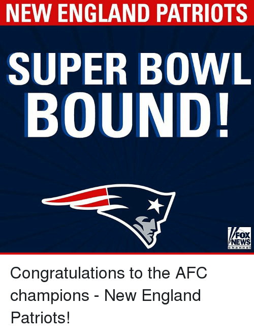 England, Memes, and New England Patriots: NEW ENGLAND PATRIOTS  SUPER BOWL  BOUND!  FOX  NEWS Congratulations to the AFC champions - New England Patriots!