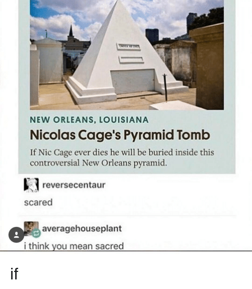 Nicolas Caged: NEW ORLEANS, LOUISIANA  Nicolas Cage's Pyramid Tomb  If Nic Cage ever dies he will be buried inside this  controversial New Orleans pyramid.  e reverse centaur  scared  averagehouseplant  i think you mean sacred if