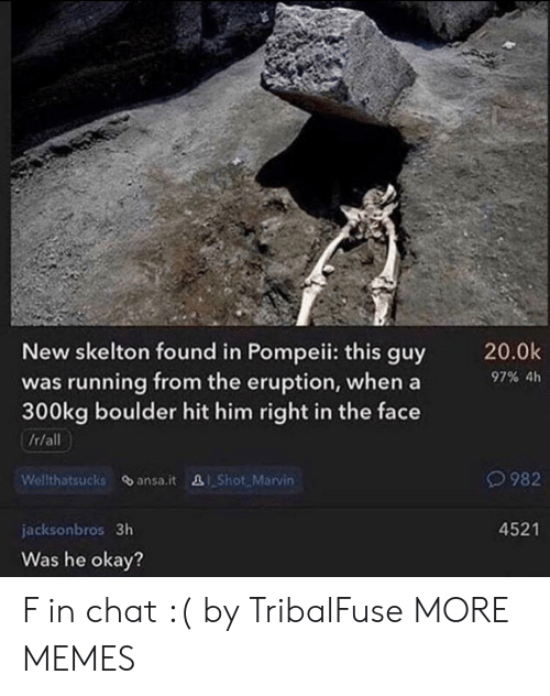 Dank, Memes, and Target: New skelton found in Pompeii: this guy  was running from the eruption, whena  300kg boulder hit him right in the face  /r/all  20.0k  97% 4h  O982  Welthatsucks ansa.it &Shot. Marvin  4521  jacksonbros 3h  Was he okay? F in chat :( by TribalFuse MORE MEMES
