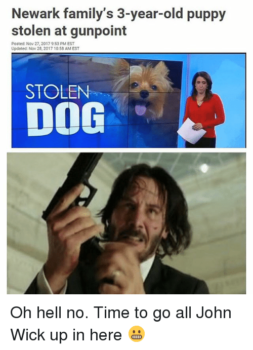 oh hell no: Newark family's 3-year-old puppy  stolen at gunpoint  Posted: Nov 27, 2017 9:53 PM EST  Updated: Nov 28, 2017 10:58 AM EST  DOG  STOLEN Oh hell no. Time to go all John Wick up in here 😬