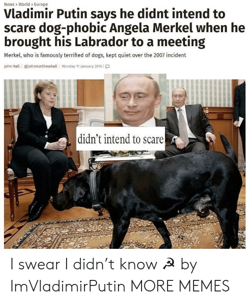 Vladimir Putin: News> World> Europe  Vladimir Putin says he didnt intend to  scare dog-phobic Angela Merkel when he  brought his Labrador to a meeting  Merkel, who is famously terrified of dogs, kept quiet over the 2007 incident  John Hall | @johnmatthewhall | Monday 11 January 2016 | โ.]  didn't intend to scare I swear I didn't know ☭ by ImVladimirPutin MORE MEMES