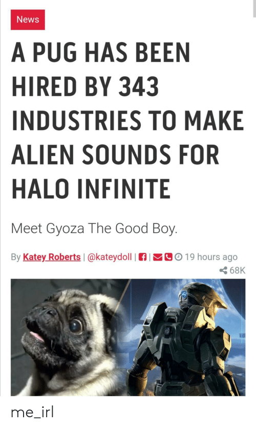 roberts: News  A PUG HAS BEEN  HIRED BY 343  INDUSTRIES TO MAKE  ALIEN SOUNDS FOR  HALO INFINITE  Meet Gyoza The Good Boy.  By Katey Roberts  CO19 hours ago  @kateydoll  68K me_irl