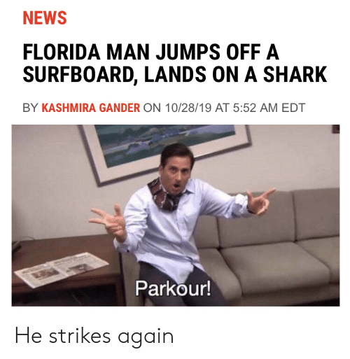 jumps off: NEWS  FLORIDA MAN JUMPS OFF A  SURFBOARD, LANDS ON A SHARK  BY KASHMIRA GANDER ON 10/28/19 AT 5:52 AM EDT  Parkour! He strikes again